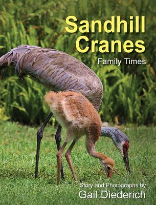 Sandhill Cranes, Family Times, Diederich, Gail