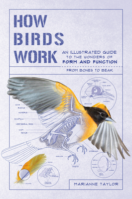 Image for HOW BIRDS WORK: AN ILLUSTRATED GUIDE TO THE WONDERS OF FORM AND FUNCTIONFROM BONES TO BEAK