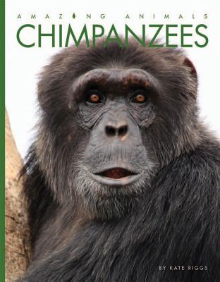 Image for Chimpanzees (Amazing Animals)