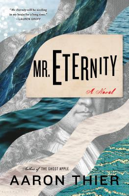 Image for Mr. Eternity A Novel