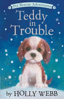 Teddy in Trouble (Pet Rescue Adventures), Webb, Holly