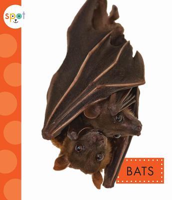 Bats (Spot), Dieker, Wendy Strobel