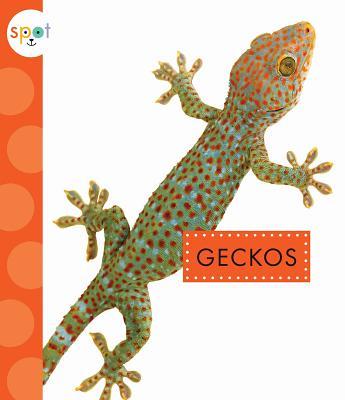 Image for Geckos (Spot)