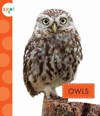 Owls (Spot), Dieker, Wendy Strobel