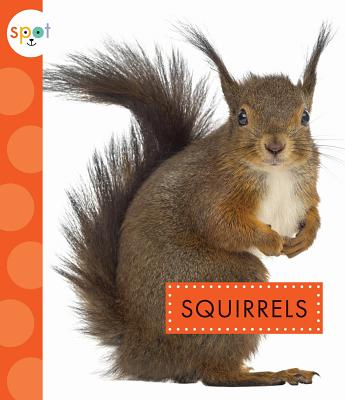 Image for Squirrels (Spot)