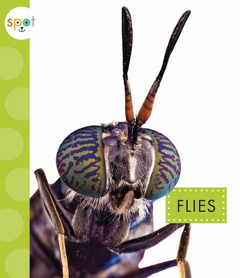 Image for Flies (Spot)