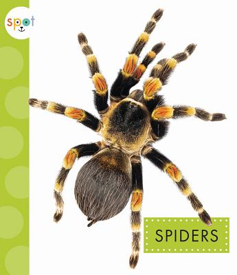 Image for Spiders (Spot)