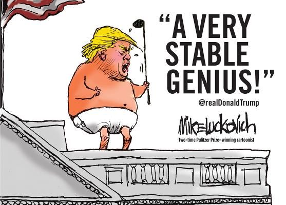 Image for A Very Stable Genius
