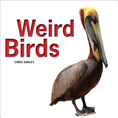 Image for Weird Birds