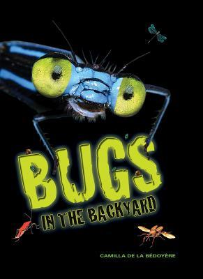 Bugs in the Backyard, Camilla de la Bedoyere