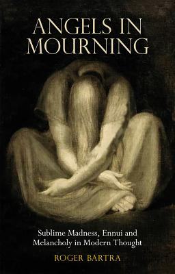 Image for Angels in Mourning: Sublime Madness, Ennui and Melancholy in Modern Thought