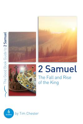 Image for 2 Samuel: The Fall and Rise of the King