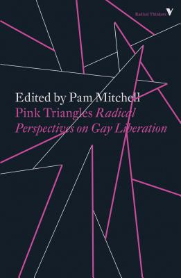 Image for Pink Triangles: Radical Perspectives on Gay Liberation