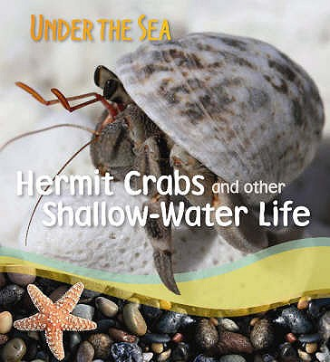 Image for Hermit Crabs and Other Shallow-water Life (Under the Sea)