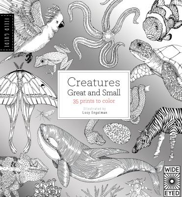 Image for Field Guide: Creatures Great and Small: 35 prints to color
