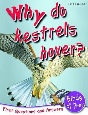 Image for Why Do Kestrels Hover? First Questions and Answers - Birds of Prey