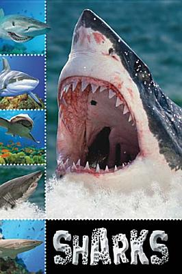Image for Sharks (Ready To Read)