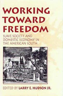 Image for Working Toward Freedom: Slave Society and Domestic Economy in the American South