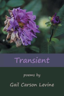 Image for Transient