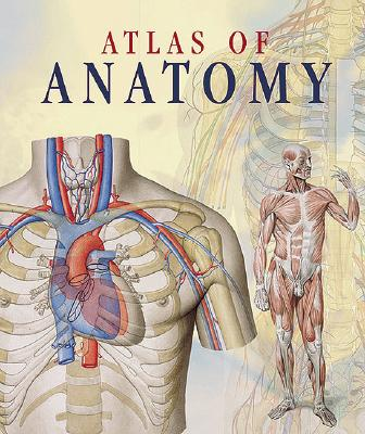 Image for Atlas of Anatomy