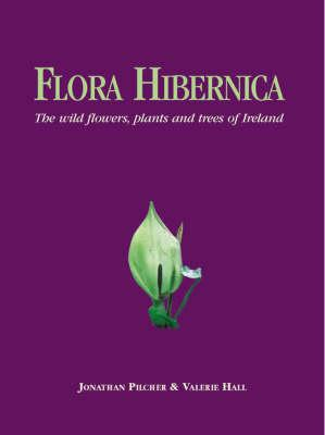 Image for Flora Hibernica: The Wild Flowers, Plants and Trees of Ireland