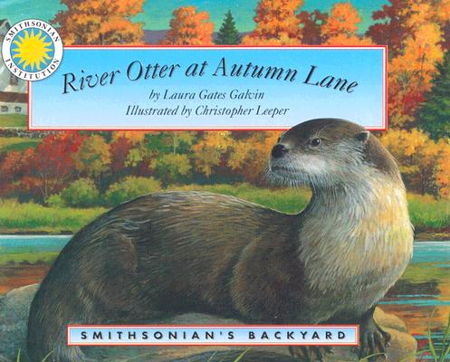 River Otter at Autumn Lane - a Smithsonian's Backyard Book (Mini book), Laura Gates Galvin