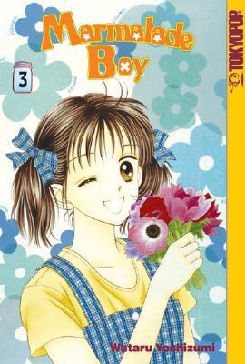 Marmalade Boy (Book 3), Wataru Yoshizumi