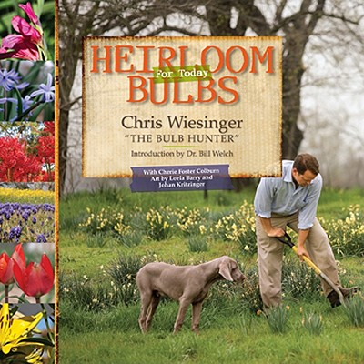 Image for HEIRLOOM BULBS FOR TODAY