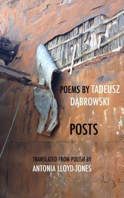 Posts, Tadeusz Dabrowski