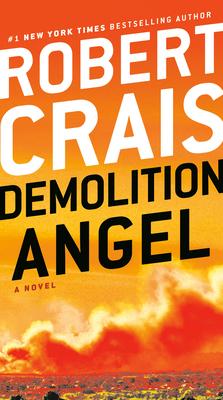 Image for Demolition Angel: A Novel