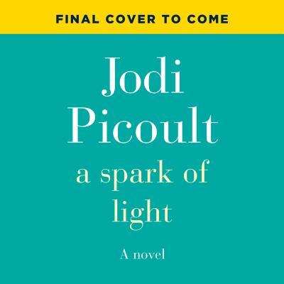 Image for A Spark of Light: A Novel