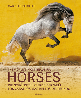 Image for WORLD'S MOST BEAUTIFUL HORSES