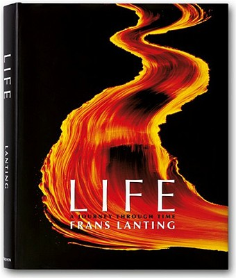 Image for Life: A Journey Through Time